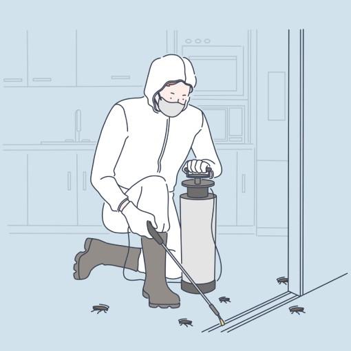 Serviço de dedetização de baratas - Inset Máxima