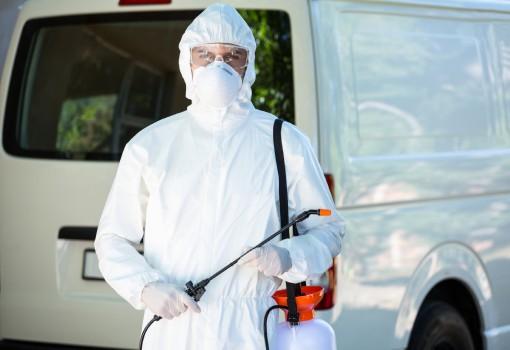 Dedetização de pulgas - Inset Máxima