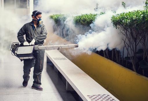 Empresa de controle de pragas - Inset Máxima